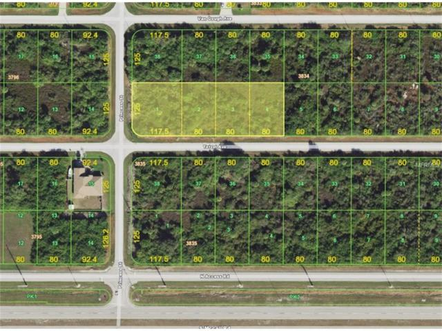 12088 Tetzel Avenue, Port Charlotte, FL 33981 (MLS #D5920209) :: G World Properties