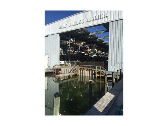 100 Circuit Road S-85, Nokomis, FL 34275 (MLS #D5920360) :: Medway Realty