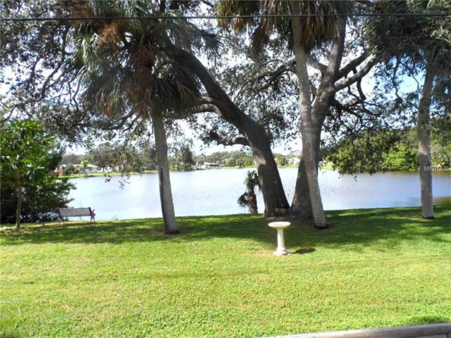 4452 Tortoise Road, Venice, FL 34293 (MLS #D5920761) :: Medway Realty
