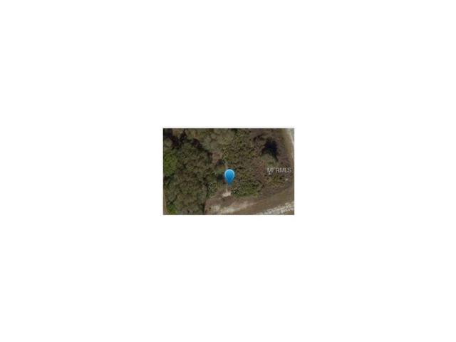 Brixton Terrace, North Port, FL 34291 (MLS #D5921027) :: G World Properties