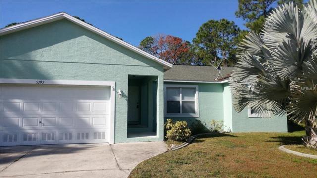 5397 Wilder Street, Port Charlotte, FL 33981 (MLS #D5921875) :: Medway Realty