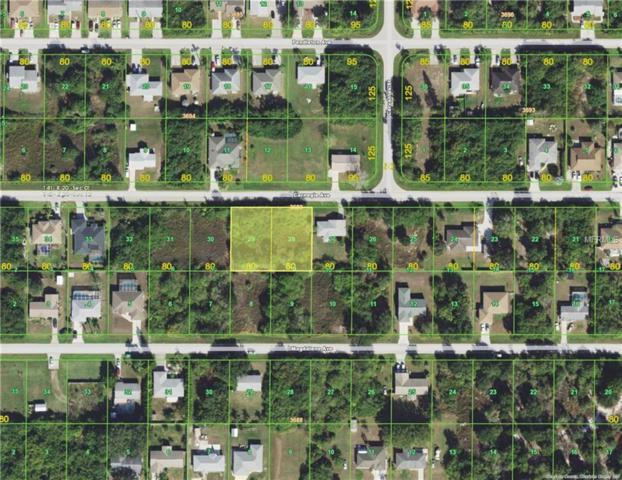11097 Carnegie Avenue, Englewood, FL 34224 (MLS #D5922609) :: The BRC Group, LLC
