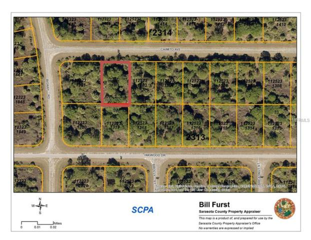 Caimito Avenue, North Port, FL 34288 (MLS #D5923009) :: Griffin Group