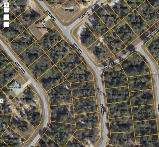 Delight Avenue, North Port, FL 34288 (MLS #D5923239) :: Griffin Group