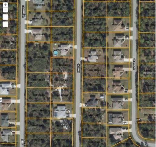 Amari Road, North Port, FL 34291 (MLS #D5923243) :: Premium Properties Real Estate Services