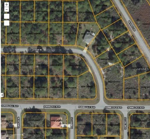 Lapidus Road, North Port, FL 34291 (MLS #D5923244) :: Godwin Realty Group