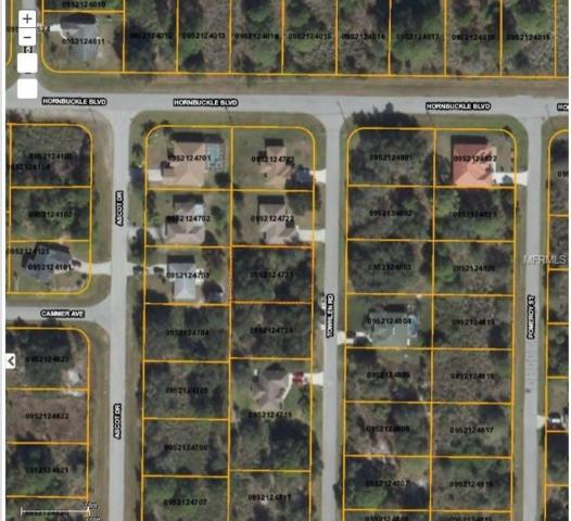 Towhlen Road, North Port, FL 34291 (MLS #D5923245) :: Griffin Group