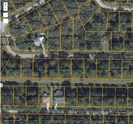Lady Slipper Avenue, North Port, FL 34291 (MLS #D5923246) :: Griffin Group
