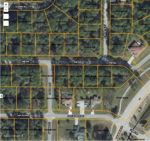 Jami Avenue, North Port, FL 34291 (MLS #D5923248) :: Griffin Group