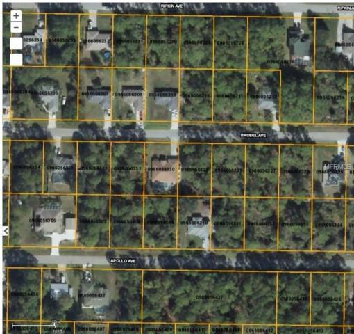 Brodel Avenue, North Port, FL 34286 (MLS #D5923255) :: Griffin Group