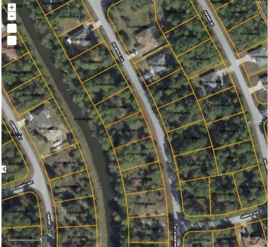 Hagerick Lane, North Port, FL 34288 (MLS #D5923263) :: Griffin Group