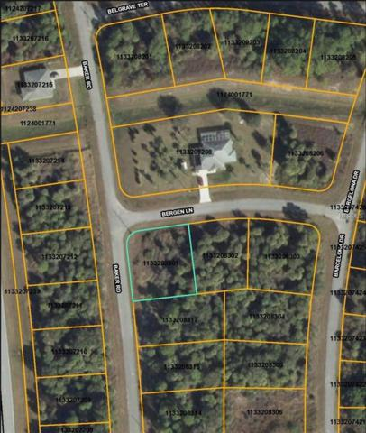 Bergen Lane, North Port, FL 34288 (MLS #D5923267) :: Griffin Group