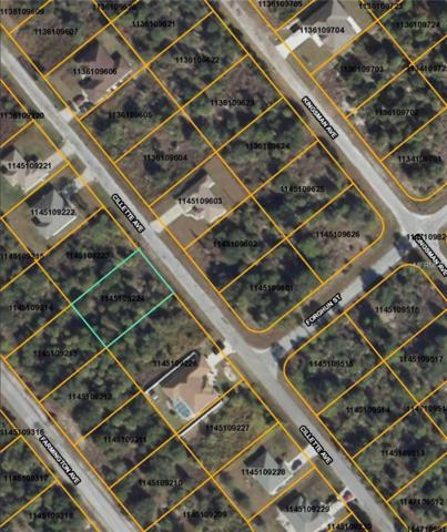 Cillette Avenue, North Port, FL 34288 (MLS #D5923279) :: Griffin Group