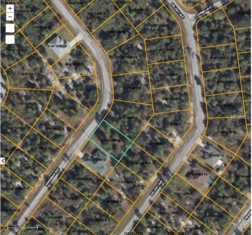 Kingsman Avenue, North Port, FL 34288 (MLS #D5923280) :: Griffin Group