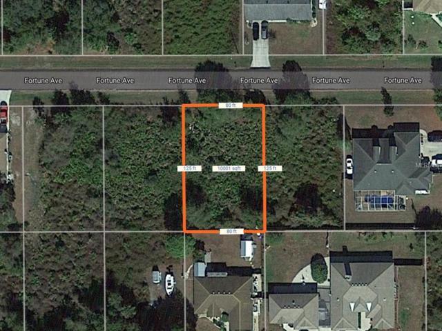 22499 Fortune Avenue, Port Charlotte, FL 33954 (MLS #D5923505) :: Griffin Group