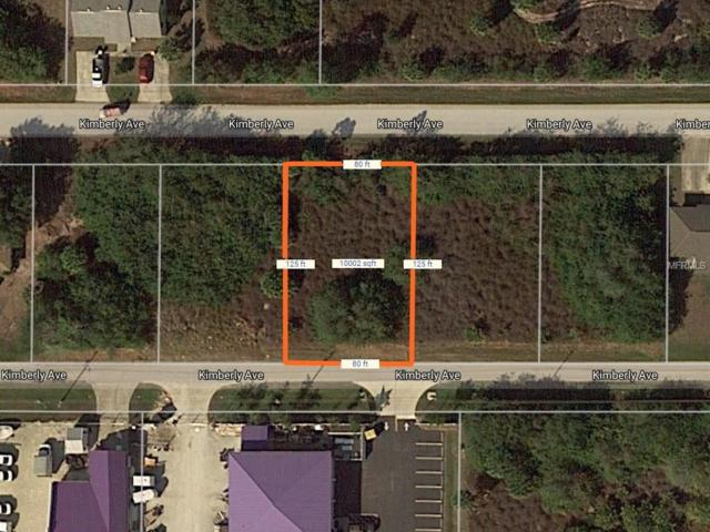 11231 Kimberly Avenue, Englewood, FL 34224 (MLS #D5923508) :: Griffin Group