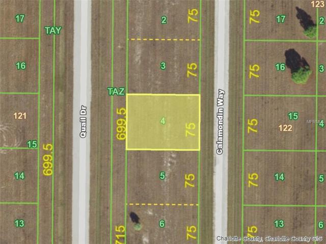 11 Calamondin (Lot 4) Way, Placida, FL 33946 (MLS #D5923540) :: Griffin Group