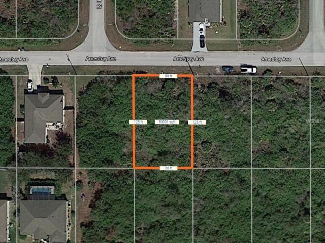 14407 Amestoy Avenue, Port Charlotte, FL 33981 (MLS #D5923585) :: Griffin Group