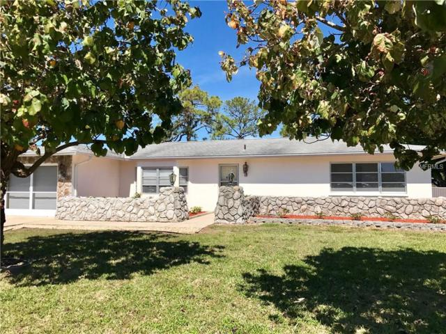 42 Golfview Court, Rotonda West, FL 33947 (MLS #D5923665) :: Medway Realty