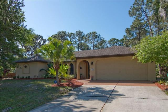 13201 Finkle Avenue, Port Charlotte, FL 33981 (MLS #D5923745) :: GO Realty