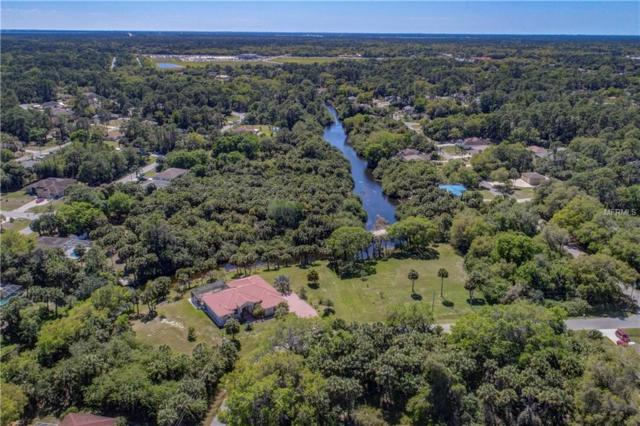 Sahara Lane, North Port, FL 34286 (MLS #D5923758) :: GO Realty