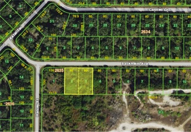 14289 Sackheim Avenue, Port Charlotte, FL 33953 (MLS #D5923869) :: KELLER WILLIAMS CLASSIC VI