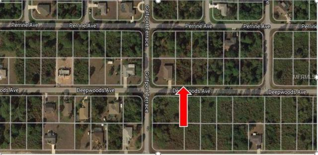 12414 Deepwoods Avenue, Port Charlotte, FL 33981 (MLS #D5924015) :: The Duncan Duo Team