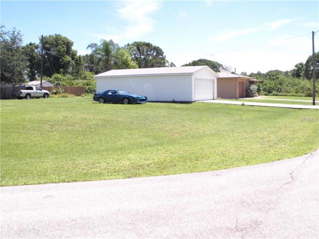 12310 Deepwoods Avenue, Port Charlotte, FL 33981 (MLS #D6100056) :: Team Pepka