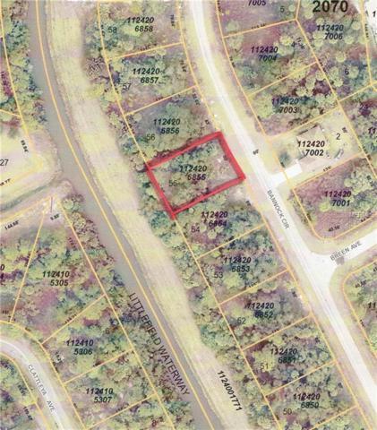 Bannock Circle, North Port, FL 34288 (MLS #D6100324) :: Team Pepka