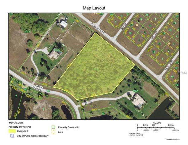 11541 Bridle Path Lane, Placida, FL 33946 (MLS #D6100769) :: Griffin Group