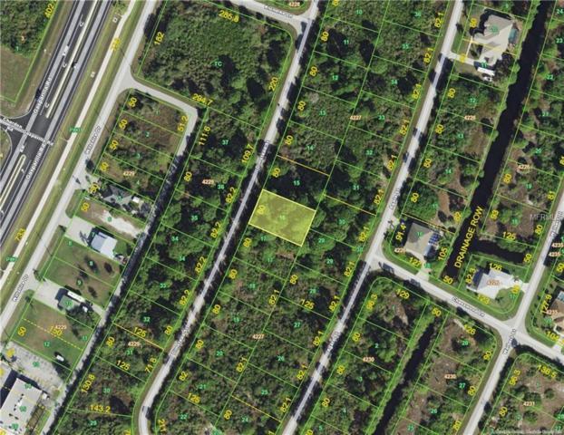 8250 Dimstead Street, Port Charlotte, FL 33981 (MLS #D6101066) :: FL 360 Realty