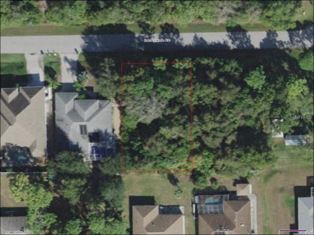 9245 Boca Grande Avenue, Englewood, FL 34224 (MLS #D6101509) :: White Sands Realty Group