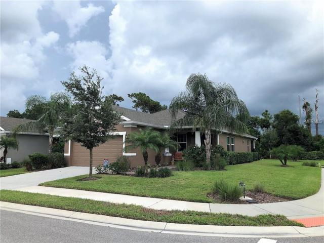 25740 Grayton Avenue, Englewood, FL 34223 (MLS #D6101676) :: Medway Realty