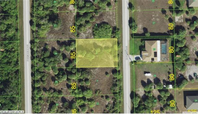 10469 New Brittain Street, Port Charlotte, FL 33981 (MLS #D6101690) :: Team Pepka