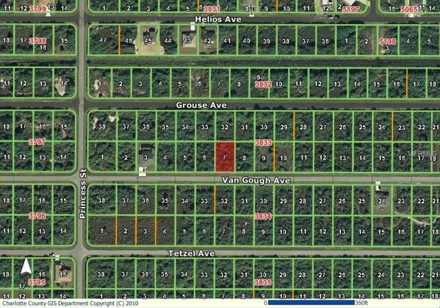 12136 Van Gough Avenue, Port Charlotte, FL 33981 (MLS #D6102011) :: The BRC Group, LLC