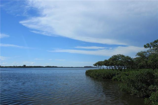 10011 Eagle Preserve Drive, Englewood, FL 34224 (MLS #D6102048) :: The BRC Group, LLC