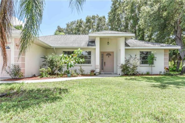 10123 Stonecrop Avenue, Englewood, FL 34224 (MLS #D6102064) :: Medway Realty