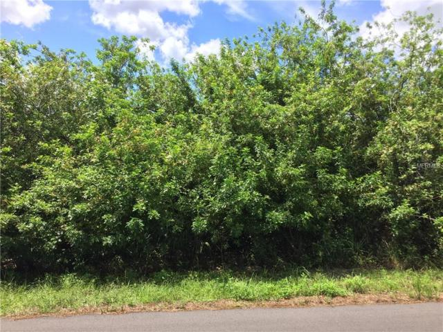 Lot 30 Johannesberg Road, North Port, FL 34288 (MLS #D6102503) :: KELLER WILLIAMS CLASSIC VI