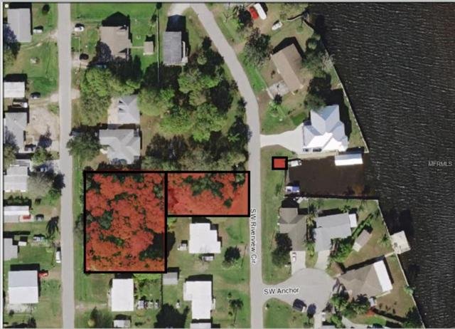 9923, 10301&BoatBasi SW Riverview Circle, Arcadia, FL 34269 (MLS #D6102867) :: Homepride Realty Services