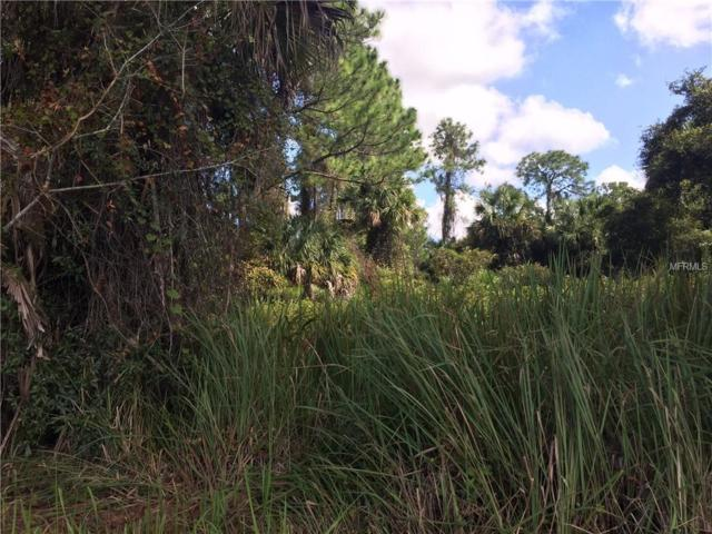 Lot 7 Hank Hoff Ave NW, Dunnellon, FL 34431 (MLS #D6102896) :: RE/MAX Realtec Group