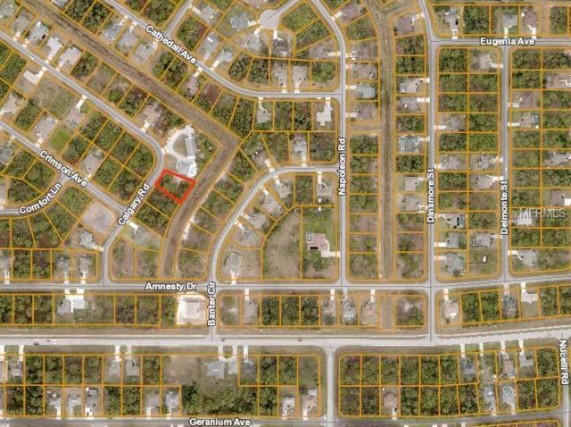 Calgary Road, North Port, FL 34288 (MLS #D6103435) :: Delgado Home Team at Keller Williams