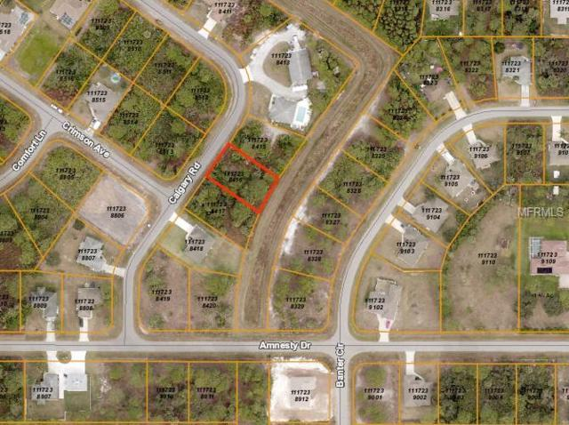 Calgary Road, North Port, FL 34288 (MLS #D6103436) :: Medway Realty