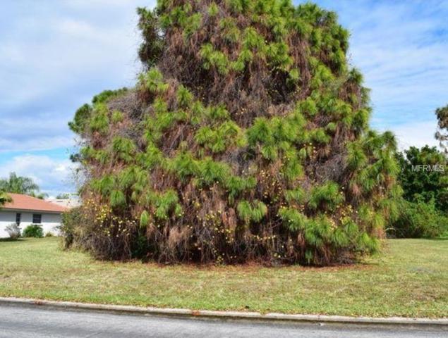 Lemonwood Drive, Englewood, FL 34223 (MLS #D6103909) :: The BRC Group, LLC