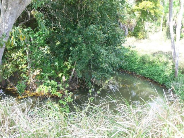 217 Antis Drive, Rotonda West, FL 33947 (MLS #D6103982) :: Medway Realty
