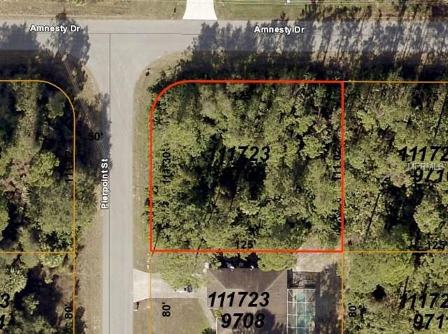 Amnesty Drive, North Port, FL 34288 (MLS #D6104043) :: Mark and Joni Coulter | Better Homes and Gardens