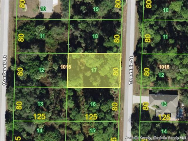 491 Troutdale (Lot 17) Street, Port Charlotte, FL 33954 (MLS #D6104169) :: Homepride Realty Services