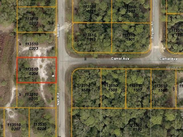 Nell Road, North Port, FL 34288 (MLS #D6104242) :: Medway Realty