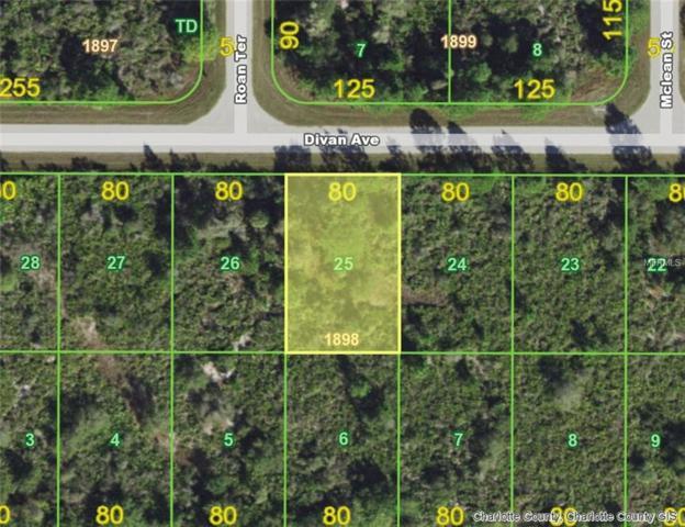 12411 Divan (Lot 25) Avenue, Port Charlotte, FL 33981 (MLS #D6104430) :: Remax Alliance