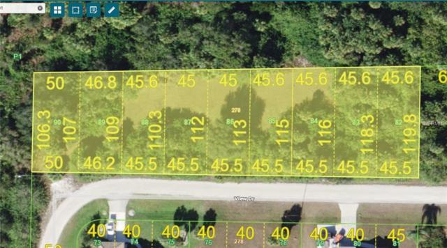 26408 View Drive, Punta Gorda, FL 33983 (MLS #D6104553) :: Homepride Realty Services