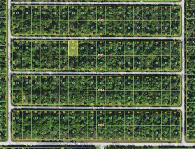 13109 Rankin Avenue, Port Charlotte, FL 33953 (MLS #D6104596) :: Homepride Realty Services